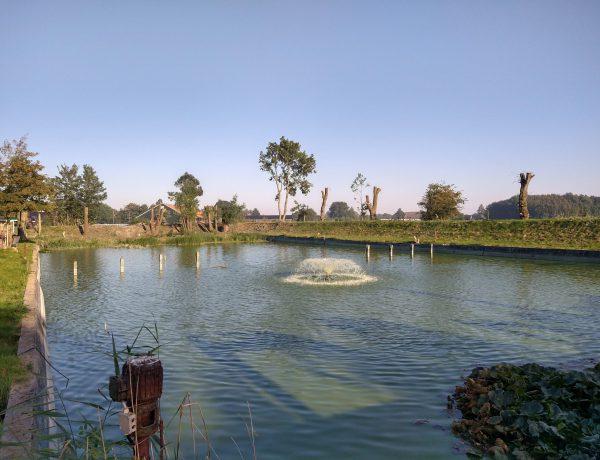 oude zwembad Uithuizen